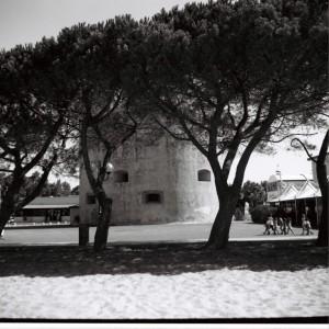 Torregrande - La torre tra le chiome