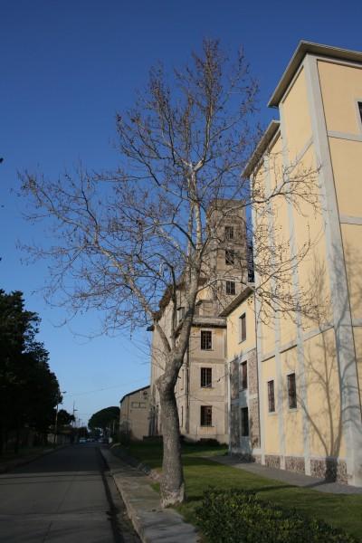 Altra vista dei vecchi edifici