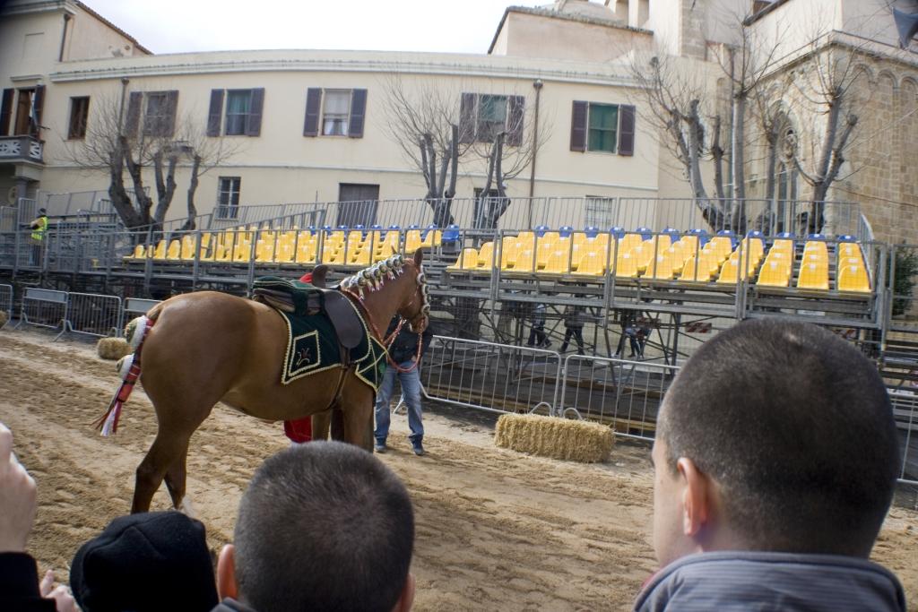 """Il cavallo di """"Eleonora"""""""