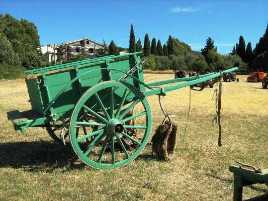 IMG_1905 - Carro sardo (Custom)