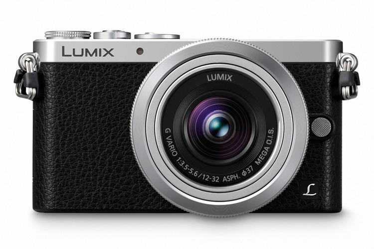 Panasonic Lumix GM1 (4)