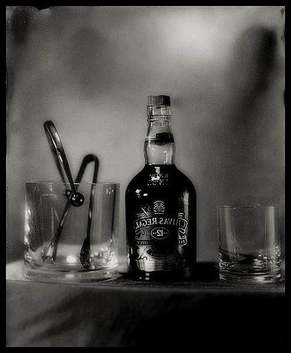 Tintype su alluminio nero_chivas_13x18